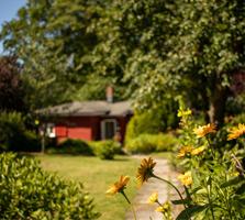 Gartenblick auf die Praxis für Familienmediation und Eheberatung in Lübeck